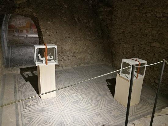 Casa Romana di Vespaia Polla : interno della casa