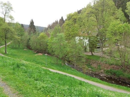 Altenau, Tyskland: Wunderbare Aussicht vom 1.Stock DZ Nr.5 ins Grüne