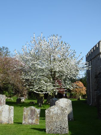 St Nicholas-at-Wade, UK: church yard