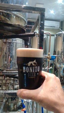 Bonito Beer: Que tal uma Oatmeal Stout de pertinho do fermentador? Aqui tem!