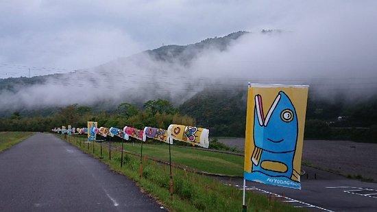 Kochi Prefecture, Japan: DSC_0085_large.jpg