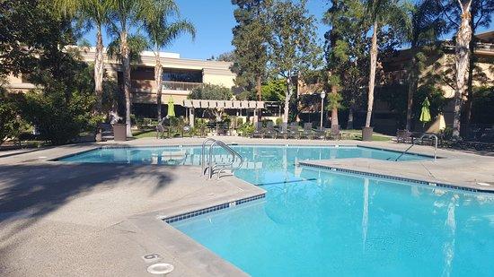 Oakwood Apartments - Woodland Hills: Complex pool
