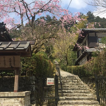 Kenreimonin Ohara Nishinomisasagi