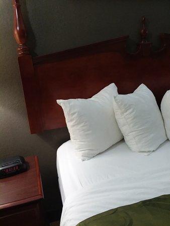 都柏林品質套房飯店照片