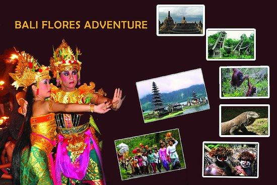 Bali Flores Adventure