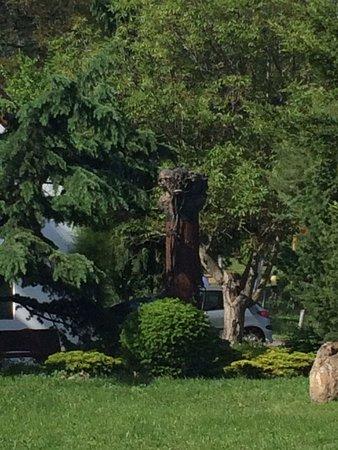 Badacsonyors, Hungary: A séta közben szobrok, kisplasztikák bújnak meg a növények között.