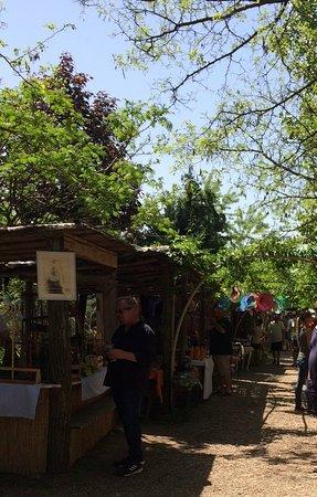 Kaptalantoti, Ungarn: Árusok