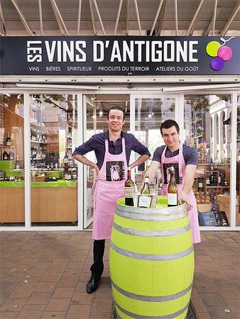 Les Vins d'Antigone
