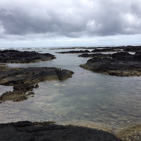 Kapoho Tide Pools: photo1.jpg