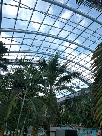 Therme Bucuresti: The Palm