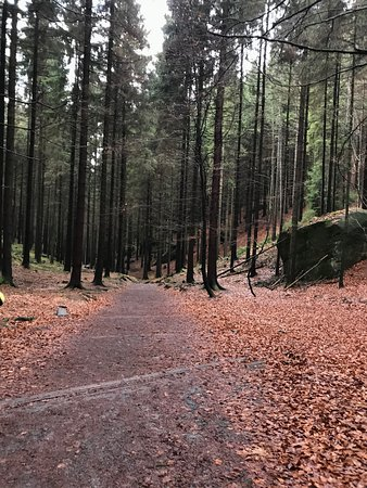 Krasna Lipa, Czech Republic: Hiking through Bohemian Switzerland