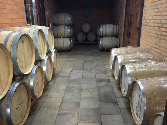 Vinícola Torcello: Novidade na Vinícola: sala de barricas aumentada e remodelada!