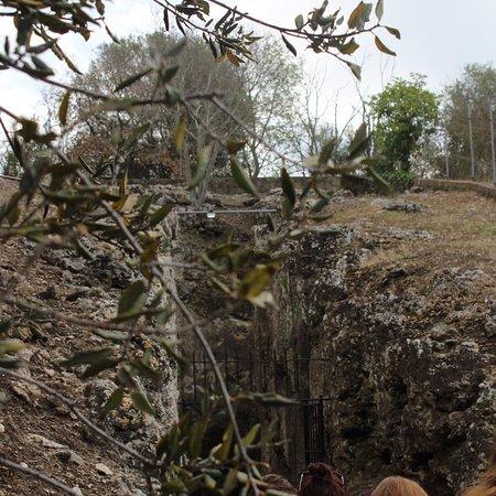 Canino, Italia: Ingresso alla Tomba Francois, per scendere circa a 16metri sotto terra