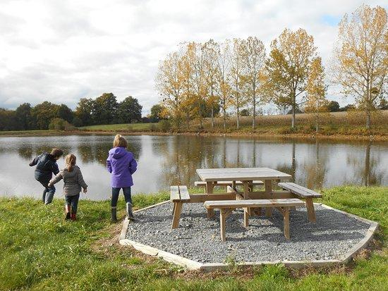 Poitou-Charentes, France : L'étang de pêche de la Bergerie de Saint-Joseph
