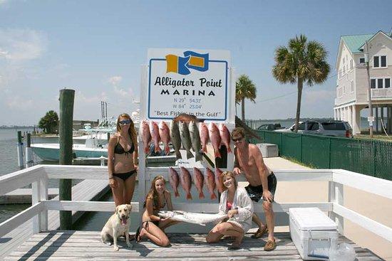 Alligator Point, FL: Grand Slam