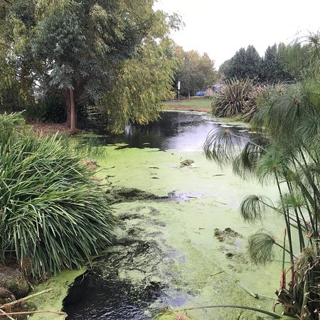 Penshurst Wetlands Public Gardens