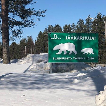 Ranua, Finland: photo6.jpg