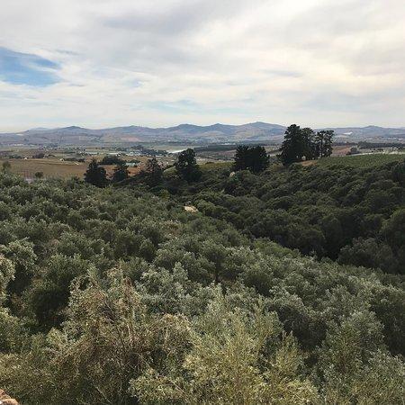Hidden Valley Wines: photo1.jpg