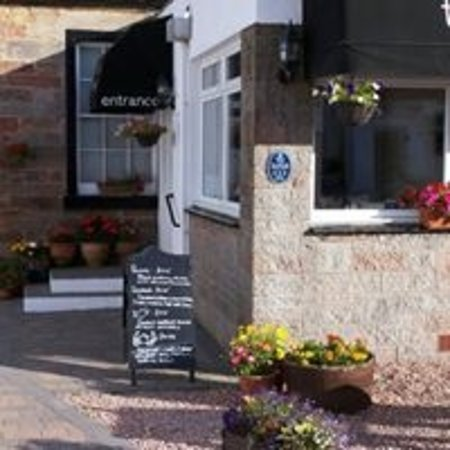 Honeypot Guest House & Tearoom: Welcome