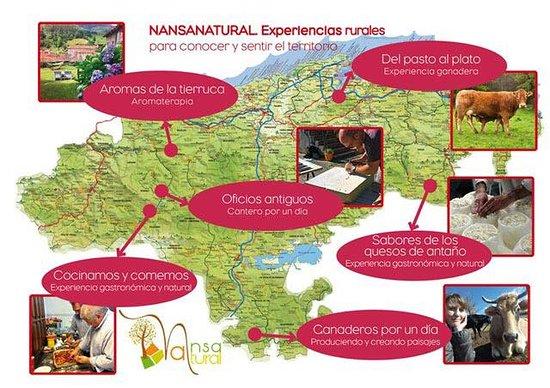 NansaNatural