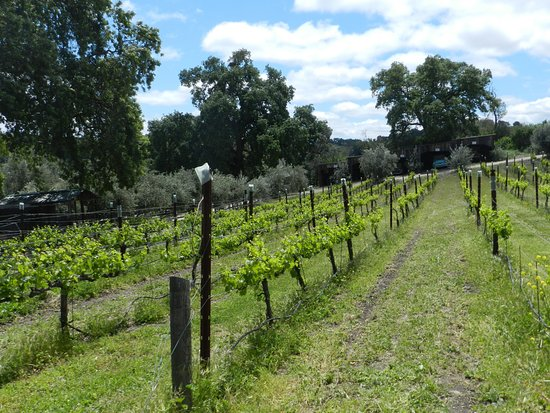 Dubost Ranch Winery