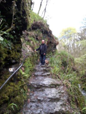 Lydford Gorge Foto