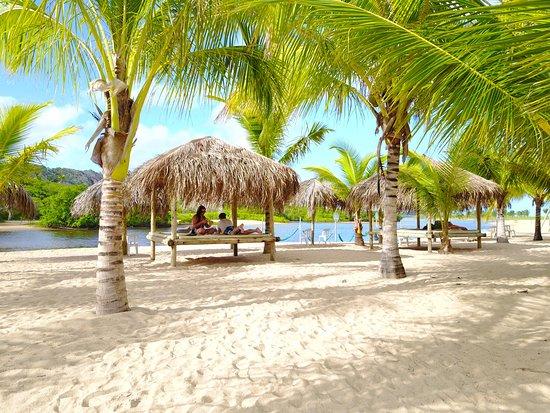 Pratagy Beach All Inclusive Resort Maceio Alagoas Brazil Hotel Reviews Photos Price Comparison Tripadvisor