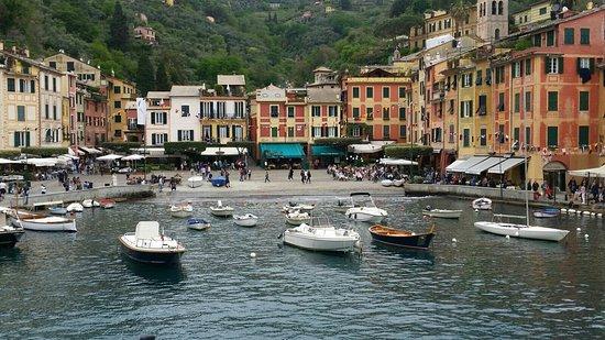 Area Marina Protetta Portofino: IMG-20180502-WA0030_large.jpg