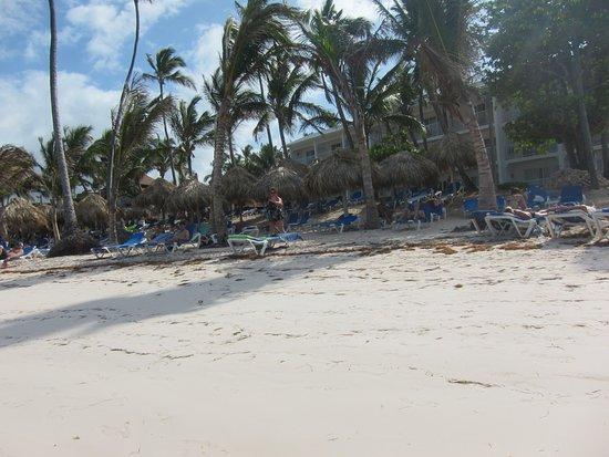 VIK Hotel Cayena Beach Photo
