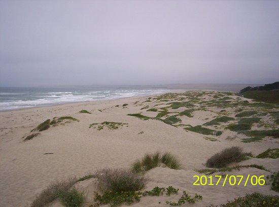 At Amtrak Surf Beach Looking North To Vandenberg