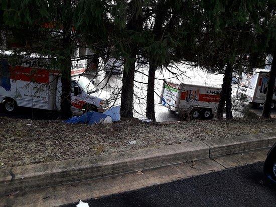 Homewood Suites by Hilton Columbia: bolsas con basura en el estacionamiento, los turistas o el vecino seran sucios, mas sucio es el