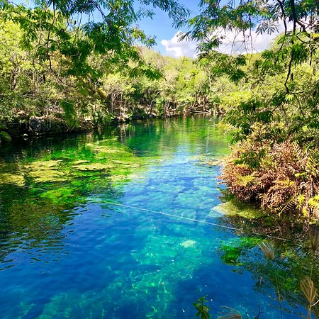 Cenote Jardin Del Eden Yucatan 2019 All You Need To Know Before