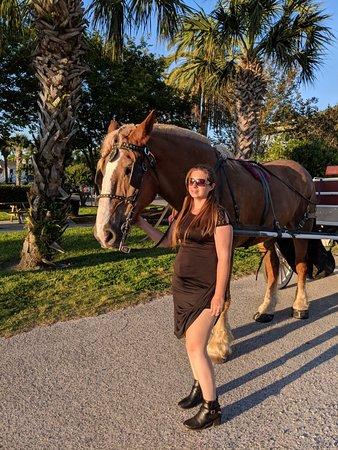 Fernandina Beach, فلوريدا: Amelia Island Carriages