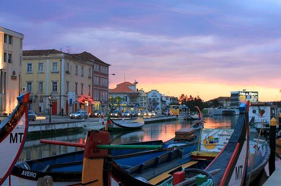 Private Full Day Tour of Aveiro from...