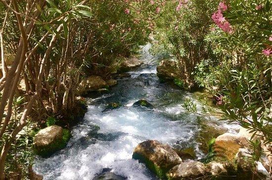 Excursion d'une journée aux cascades d'Algar et à Guadalest...