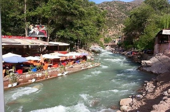 Full-Day Tour of Ourika Valley...