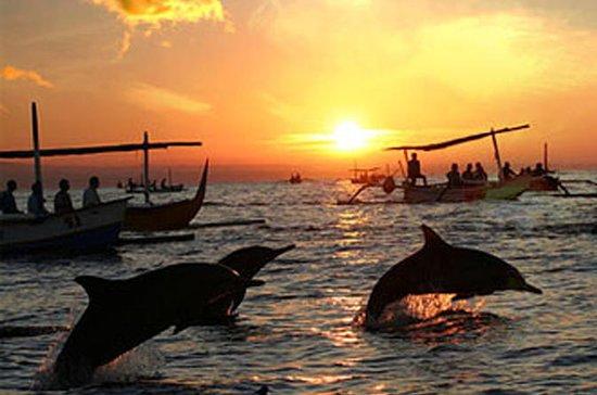 Viaje de los delfines de Bali a Lovina