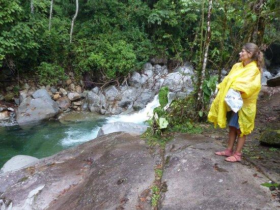 Национальный парк Чиррипо, Коста-Рика: Staunen und Genuß sind garantiert