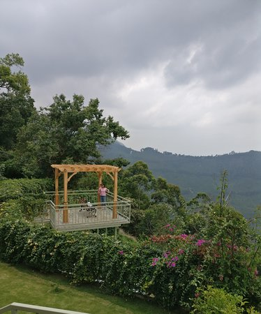 Fragrant Nature : Pleasant/Sweet smell of Nature : Mesmerizing hillview property