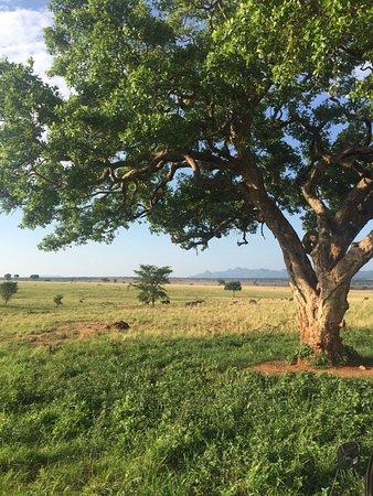 Kitgum, ยูกันดา: Nature at its best.