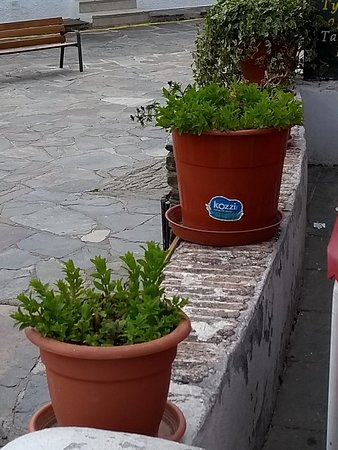 Capileira, Spain: IMG_20180502_154905283_large.jpg