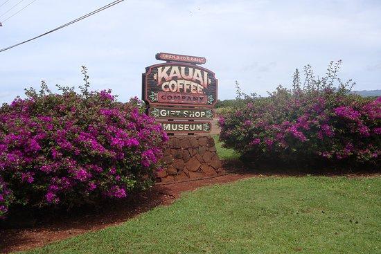 Kalaheo, هاواي: Beaucoup de bougainvillées