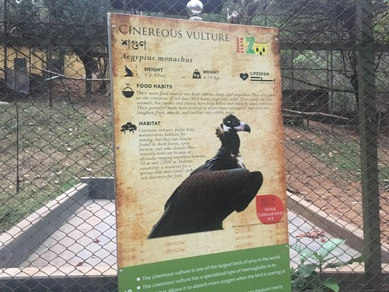 Assam State Zoo and Botanical Garden: vulture signboard