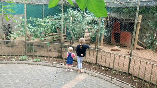 National Zoological Gardens of South Africa Photo