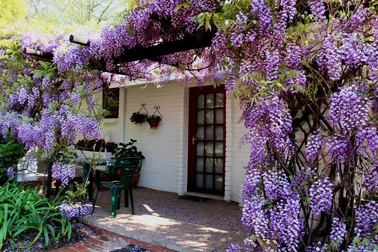 Rivonia Bed & Breakfast Garden Estate : A Family Unit - two rooms which can interlead with a shared passage