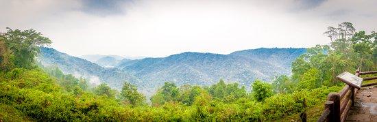 Pak Phli, Thailand: Khao Yai National Park - Vista