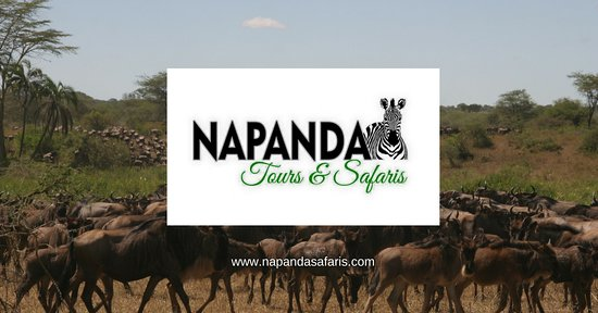 ‪Napanda Tours and Safaris‬