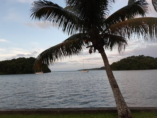Lami, Fiyi: coconut a shore