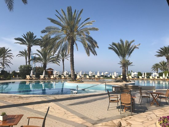 Constantinou Bros Athena Beach Hotel: Gorgeous breakfast. A great start to the day. This photo is the patio location.