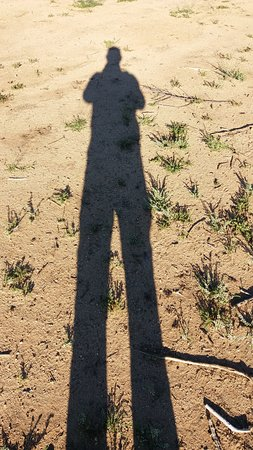 Erindi Game Reserve, Namibia: ICH WAR HIER